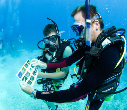 underwater_scuba_staff_instruction